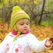 Baby girl in autumn yellow forest holding leaf and looking in ha — Stock Photo #13428932