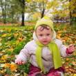 Beautiful smiling baby sitting on yellow green foliage on bright — Stock Photo