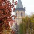 Old Prague building among the trees near park in autumn backgrou — Stock Photo #15780133