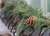 Christmas cone and fir green tree decoration on the street — Stock Photo
