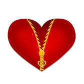 Red heart with zipper isolated on white background. Illustration — Stock Photo