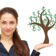 Beautiful woman holding on hand money tree with green dollars is — Stock Photo