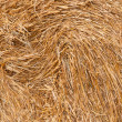 Straw — Stock Photo #13990954