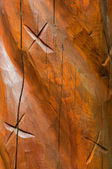 Totem abstract — Stock Photo