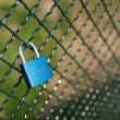Padlock of love — Stock Photo #29045671