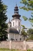 Katedralen i i zamosc — Stockfoto