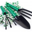 Garden tools — Stock Photo #39105841