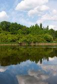 Op het meer — Stockfoto