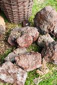 Rudy żelaza — Zdjęcie stockowe