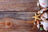 Seashells on a wooden background — Stock Photo