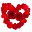 Heart made of red rose petals  — Stock Photo