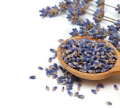 Lavender petals in a wooden spoon — Stock Photo