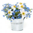 Foto Stock: Forget-me-not and narcissus flowers over white