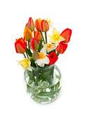 тюльпаны и нарциссы цветы в стеклянной вазе — Стоковое фото