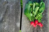 Fresh radishes on wooden table — Stock Photo