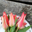 Tulips on wooden backgound — Stock Photo #28573033