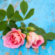 Stock Photo: Pink roses on blue wooden background
