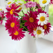 Daisies on windowsill — Stock Photo #28573967