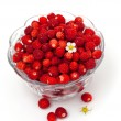 Wild strawberries in a glass bowl — Foto Stock