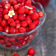 Wild strawberry jam — Foto Stock