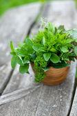 świeże zioła w drewnianym moździerzu — Zdjęcie stockowe