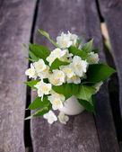 Bunch of jasmine flowers on wooden garden table — Стоковое фото