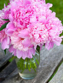 Bunch of peonies on wooden background — Foto Stock