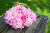 Bunch of peonies in a basket on wooden background — Stock Photo