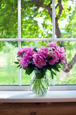 Pink peonies on window sill — Stock Photo