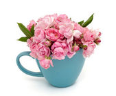Blue cup full of small pink roses over white — Stock Photo