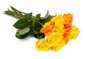 Yellow and orange roses — Stock Photo
