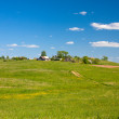 Country summer landscape — Stockfoto