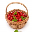 Wild strawberries in a basket isolated on white background — ストック写真