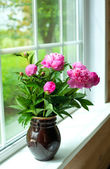 Vase with peonies — Stock Photo