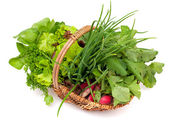 Basket with herbs and vegetables — Stock Photo