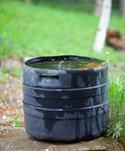Plastic container collecting rain water for plant watering — Stock Photo