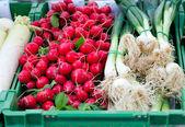 Radishes and spring onion on farmers market — Stock Photo