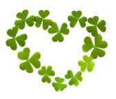 Heart made of clover — Stock Photo