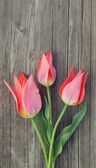 Three red tulips on wooden table — Foto de Stock