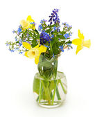 Bouquet of spring flowers on white background — Stock Photo