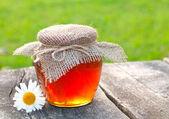 Jar with honey on garden table — Stock Photo