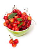 Yellow and red cherries in bowl — Stock Photo