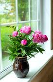 ваза с пионами — Стоковое фото