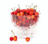 желтые и красные вишни в миске — Стоковое фото