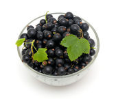 Bowl with black currant — Stock Photo