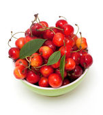 Ciotola con ciliegie — Foto Stock