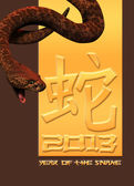2013 Year of the snake — Stock Photo