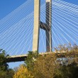 Talmadge Memorial Bridge - Foto de Stock