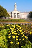 Denver City Hall — Stock Photo