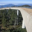 Stock Photo: Clingmans Dome - Great Smoky Mountains National Park